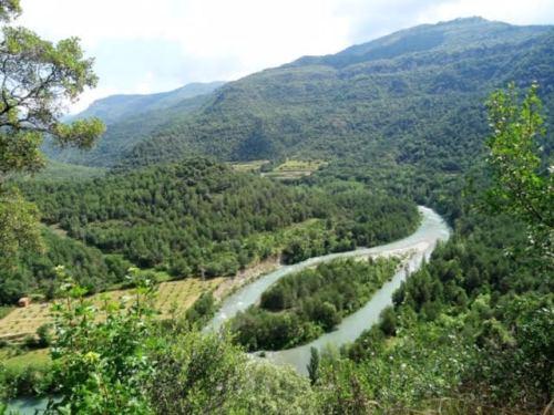 Huescas
